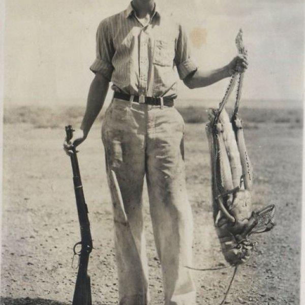 Big Grasshoper