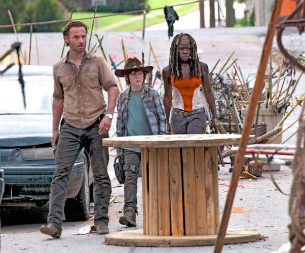 Walking Dead town sold on eBay auction