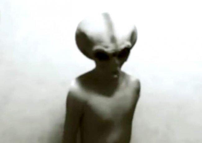 Real Alien footage. Tape by KGB