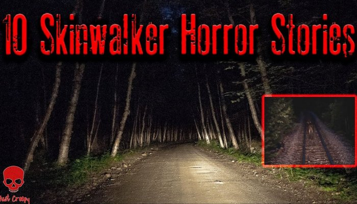 Embedded thumbnail for 4 TRUE Scary SKINWALKER Horror Stories